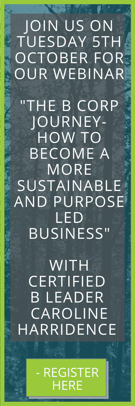 The B Corp Journey - iMultiply webinar